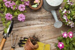 Spring Gardening Tips & Tricks to Get That Garden Bling