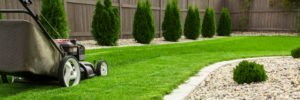 Three Steps to Achieving Perfect Spring Lawn
